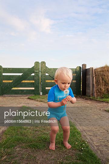 Junge mit Pusteblume - p606m1564863 von Iris Friedrich