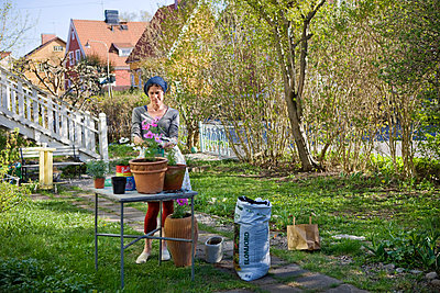 Woman planting in pots, Sweden. - p31224306 by Ulf Huett Nilsson