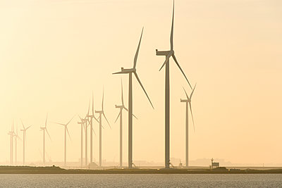 Wind farm in the Netherlands - p1079m1137119 by Ulrich Mertens