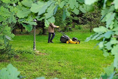 Mowing lawn with petrol lawn mower - p1527m2122076 by Slaveng
