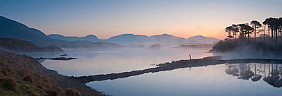 Derryclare Lough at dawn - p871m838880 by Ben Pipe