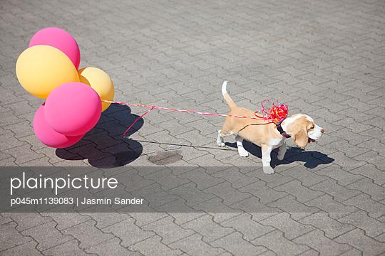 Geburtsagsgeschenk - p045m1139083 von Jasmin Sander