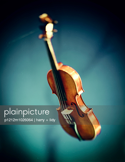 Violin - p1212m1026064 by harry + lidy
