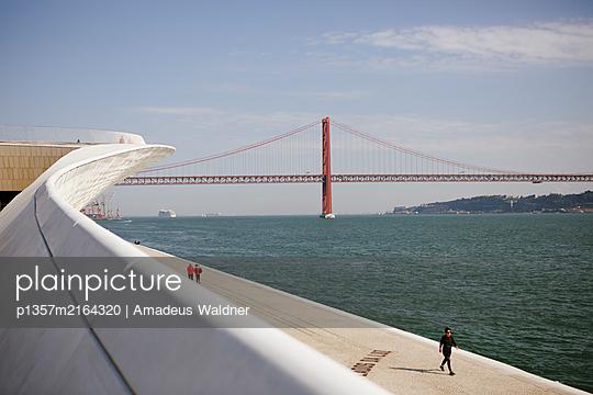 p1357m2164320 by Amadeus Waldner
