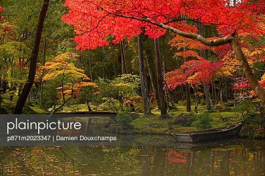 p871m2023347 von Damien Douxchamps