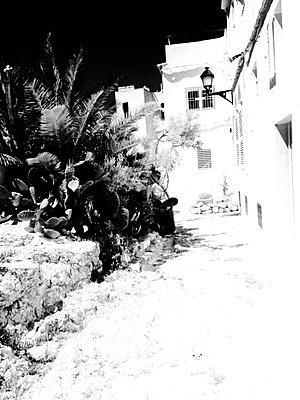 Ibiza schwarz-weiß - p1089m908014 von Frank Swertz