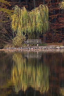 Frankfurt - p4170128 by Pat Meise
