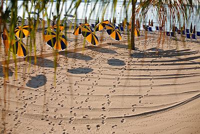 Sun shades on the beach - p1270m1106526 by Christophe Deschanel