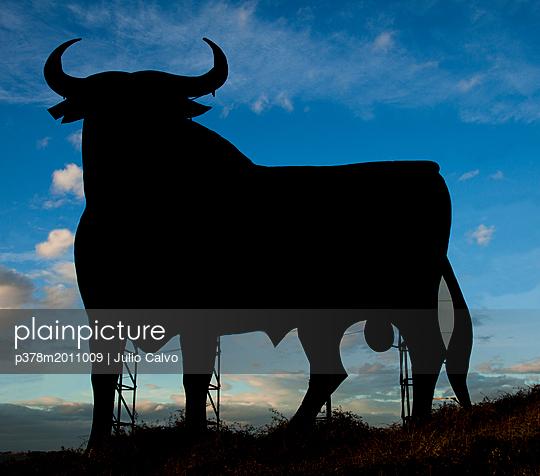 p378m2011009 von Julio Calvo