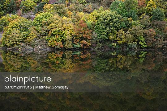 p378m2011915 von Matthew Somorjay