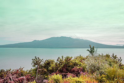 Volcano Osorno on the Lake Llanquihue - p1038m2087599 by BlueHouseProject