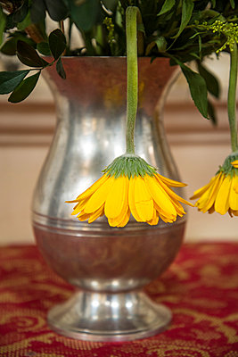 Yellow flowers in flower vase - p1170m1090781 by Bjanka Kadic