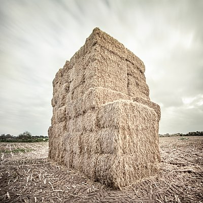 Bales of straw - p1137m2296699 by Yann Grancher
