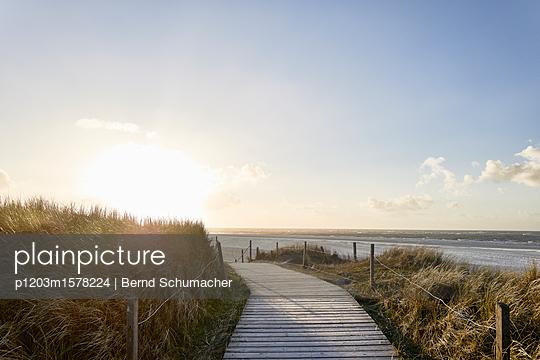 Bohlenweg in den Dünen  - p1203m1578224 von Bernd Schumacher