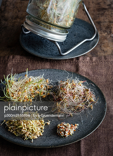 Plate with various sprouts - p300m2155894 by Eva Gruendemann