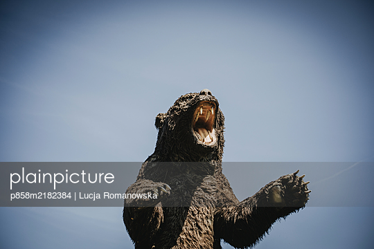 Bär - p858m2182384 von Lucja Romanowska
