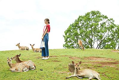 Young Japanese with deer at Nara Park - p307m2127303 by Naoki Nishimura