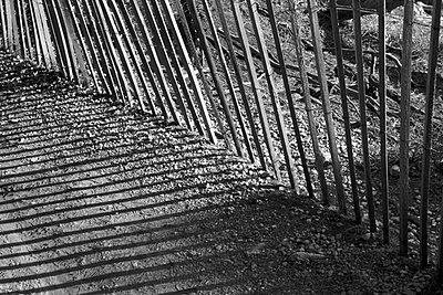 Fence - p1075m885339 by jocl