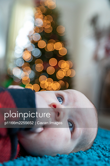 Baby boy laying near Christmas tree. - p1166m2255652 by Cavan Images