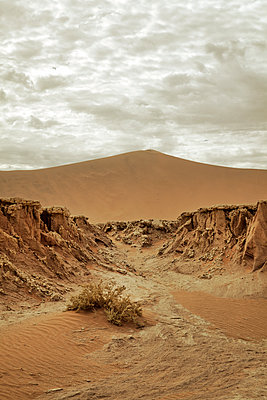 Desert in Namibia - p1248m1159866 by miguel sobreira