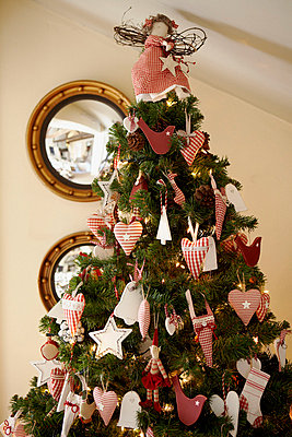 Heart and star shaped handmade Christmas decorations on tree - p349m789721 by Brent Darby