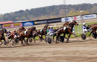 Sweden, Vastra Gotaland, Gothenburg, View of horse race - p352m1078941f by Mattias Nilsson