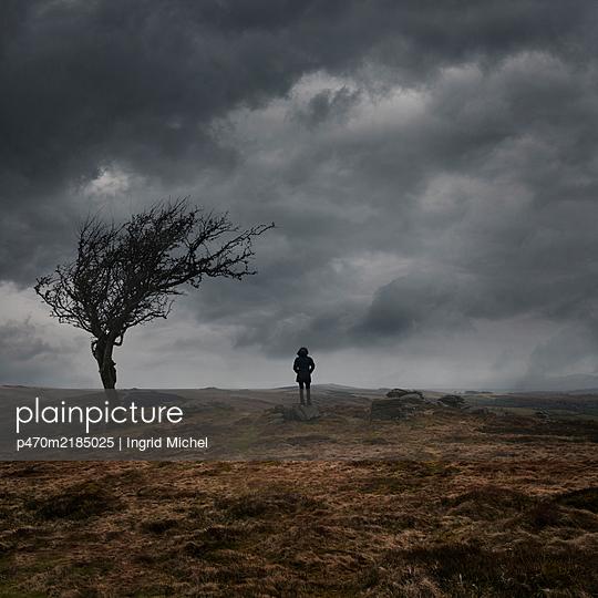 In the Dartmoor - p470m2185025 by Ingrid Michel