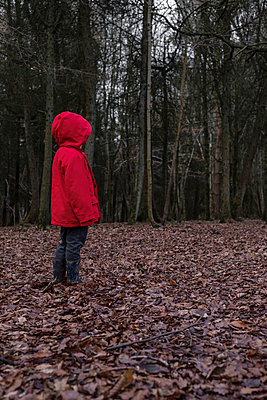 Small boy alone in a forest - p1228m1527678 by Benjamin Harte