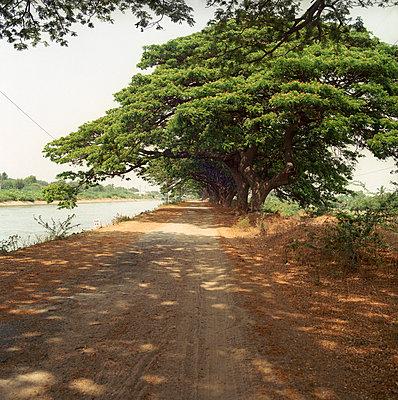 Tungabhadra in Südindien - p910m668941 von Philippe Lesprit