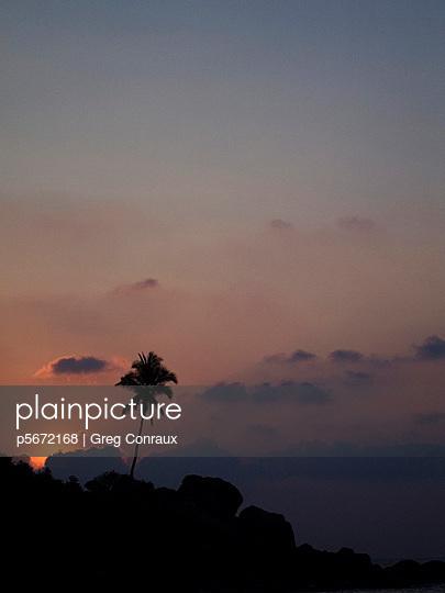 Einzelne Palme - p5672168 von Greg Conraux