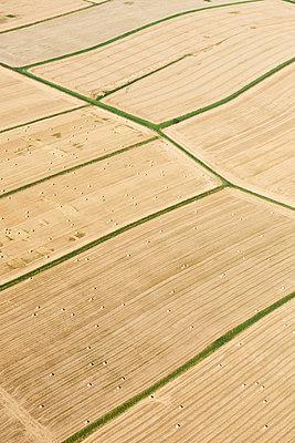 Ostfriesische Felder - p1203m1044189 von Bernd Schumacher