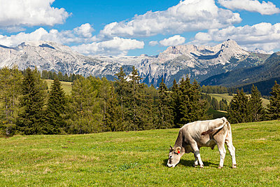 Alpen - p4880502 von Bias