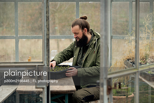 Gardener in grenhouse, checking spinach seedling is nursery pots - p300m2166445 by FL photography