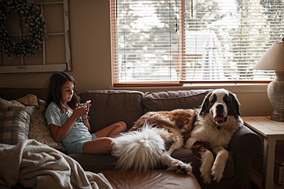 Girl using mobile phone while sitting with Saint Bernard on couch at home - p1166m2112437 by Cavan Images