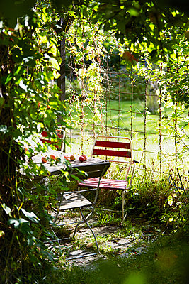 Outdoor table in apple orchard - p312m1522175 by Anna Kern