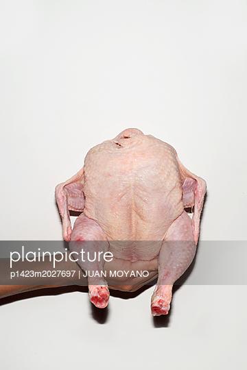 Raw chicken - p1423m2027697 by JUAN MOYANO