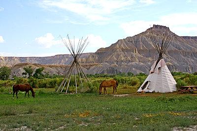 Pferde und Indianerzelte - p988m2015069 von Rachel Rebibo