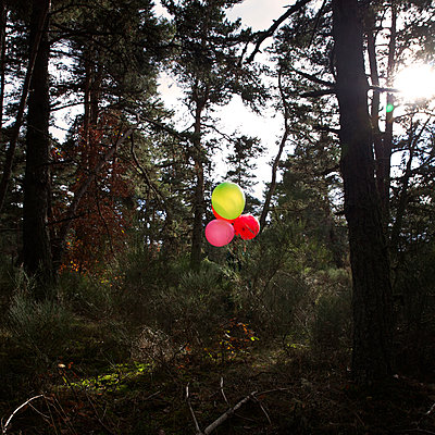 Balloons in the forest - p1105m2134536 by Virginie Plauchut