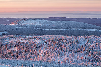 Germany, Saxony-Anhalt, sunrise in Harz National Park in winter - p300m1115040f by Patrice von Collani