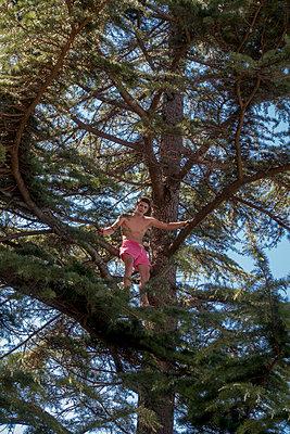 Junger Mann auf einem Baum - p1437m1502330 von Achim Bunz