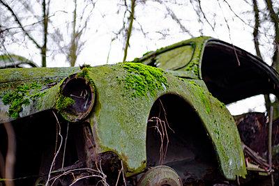Mit Moos bewachsenes Autowrack - p1463m2292935 von Wolfgang Simlinger