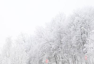ICE - p816m745603 by Stig Børre Elvegård