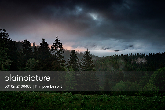 Thunderclouds over deciduous forest, Vercors, France - p910m2196463 by Philippe Lesprit