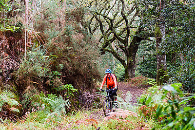 Woman mountain biking through forest - p312m1470255 by Mikael Svensson