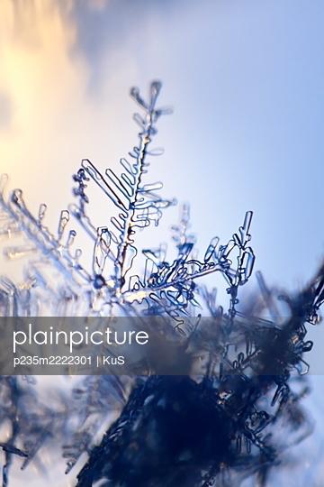 Nahaufnahme von Schneeflocken im Gegenlicht - p235m2222301 von KuS