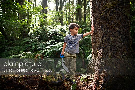 p1166m1099582f von Cavan Images