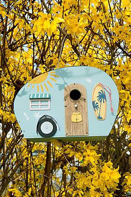 p451m2071667 by Anja Weber-Decker