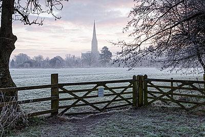 Salisbury Cathedral at dawn in Salisbury, Wiltshire, England, United Kingdom, Europe - p871m1082143 by Julian Elliott