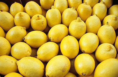Zitronenkiste - p0450971 von Jasmin Sander