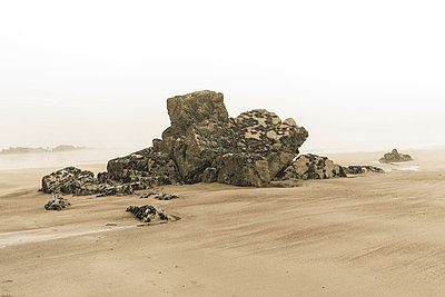Mud flat - p743m822277 by Stefan Freund